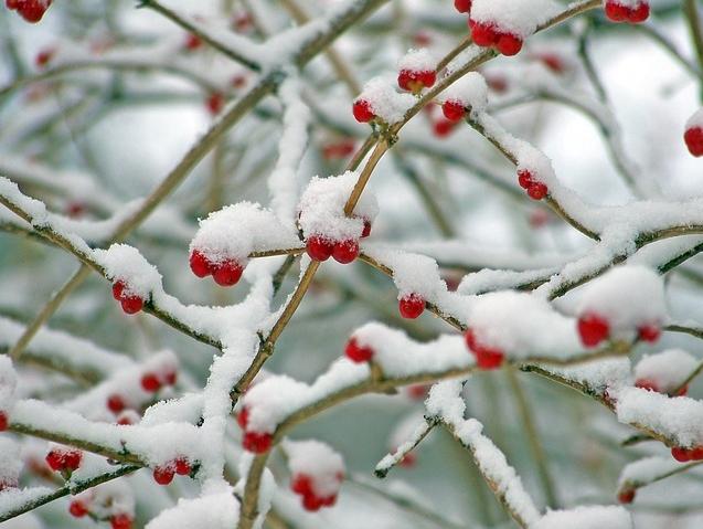12월사진.jpg
