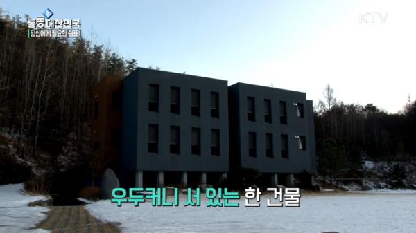 꾸미기_통통.jpg
